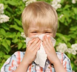 Allergy c